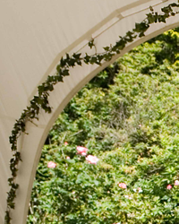Ivy trim for capri marquee